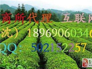 蒙顶山茶叶交易所诚招加盟:无限刷单(沈经理)