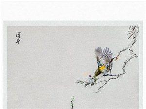 """闹春――""""画画"""""""