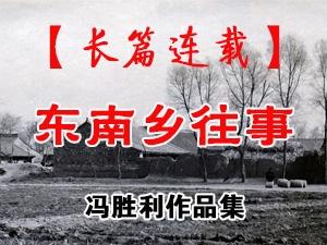 一代枭雄冯胜利和他的作品集长篇小说《东南乡往事》