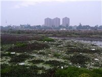 【环境大整治】是谁污染了我的母亲河~~~~