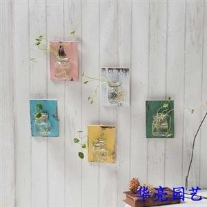 文艺风-挂在墙壁上的新生物-广汉市华亮园艺请您欣赏(图片)