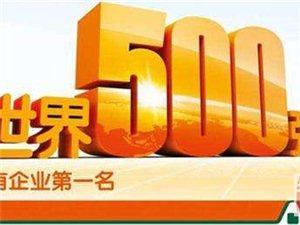 中国平安保险公司诚聘