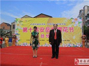 安岳第十届柠檬花节龙台分会场演出现场