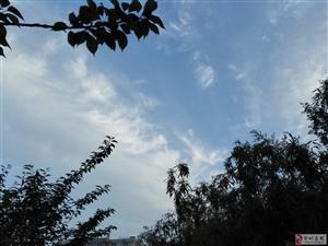 五月最美,四月绵雨把五月的天洗得剔透,没有尘埃,蔚蓝至极!