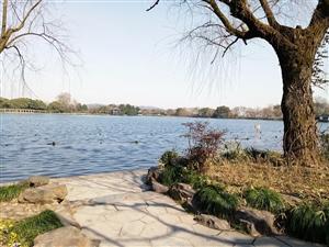 上有天堂下有苏杭!2017年元宵节游玩杭州西湖(手机摄影)