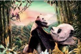 《诞生在中国》北美票房破千万美元