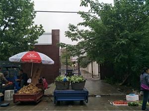 罗山二小旁道路变成菜市场,有人欢喜有人忧。