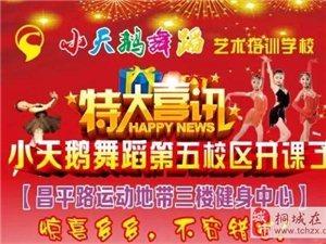 特大喜讯@小天鹅舞蹈第五校区开课啦!又一大波福利来袭...