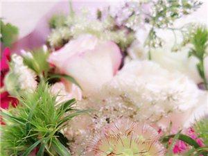 暮春之末,初夏之初,舍弃四月的所有,无论荣耀或是狼狈,五月,从心开始