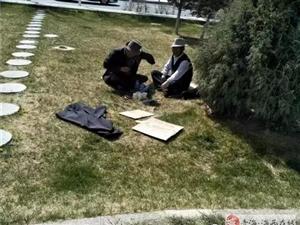德令哈的乡党们莫让公共绿地成为 个人休闲区呀,以后会曝光的