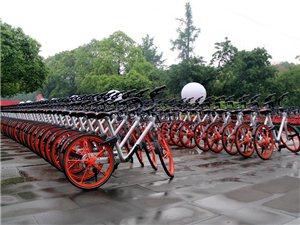 密密麻麻麻、整整齐齐齐!5・18博物馆日,三星堆摆了一抹多的摩拜单车