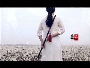 《梨花雨》音乐MV,由蛟河梨花景而创作的原创歌曲