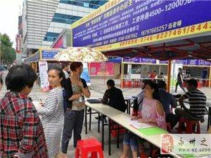 永州经开区举办2017年民营企业招聘会