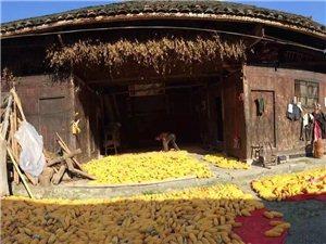 侯溪村:贵州松桃唯一的仡佬族古村落