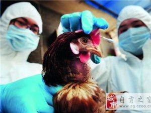 自贡新增1例人感染H7N9流感病例
