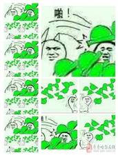 【问答】好朋友被绿了,要不要告诉TA呢?