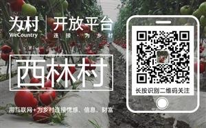 """广汉市兴隆镇西林村的朋友,黄书记喊你们加入""""西林为村""""啦!"""