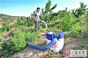 卢龙县:农业开发大旱之年显奇效