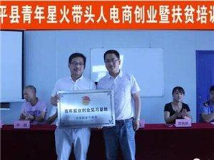 团县委成功举办富平县青年星火带头人电商创业暨扶贫培训会