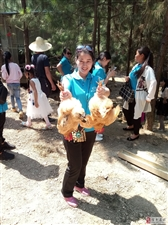 元村养鸡场活动成果,已免费品尝不一样的跑山鸡