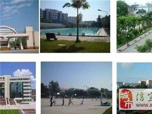 广东石油化工学院2017年成人高等学历教育;(招生简讯)