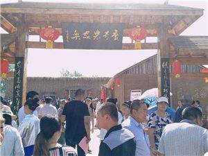 广奇农业生态示范园西瓜采摘节开幕