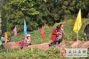 林海云天农副产品直供基地,百余位领导出访支罗村!