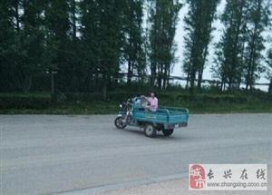 太湖边一8岁女孩开三轮电瓶车玩,车上还带着小孩