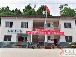 """龙泉乡棕青村召开""""中国扶贫网""""动员大会"""