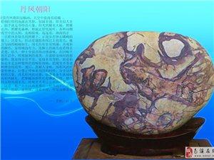 南溪石友的长江石10