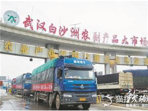 武汉白沙洲农副产品大市场政府重点扶持项目 网传搬迁改造信息系谣言