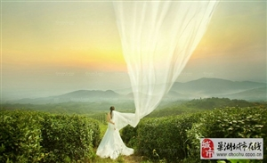 巢湖最好的婚纱摄影面对怎样让春天的美鲜艳在镜头里―巢湖金夫人婚纱摄影