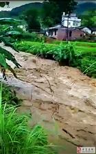寻乌丹溪乡彭溪村暴雨袭击,山洪暴发河水猛涨,有点吓人!