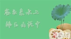 夏季养生菜谱之莲藕的16种吃方法