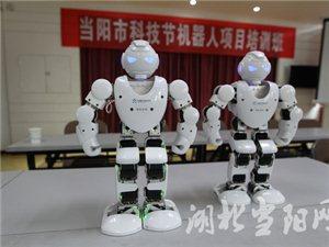 市科�f�e�k�C器人培�班