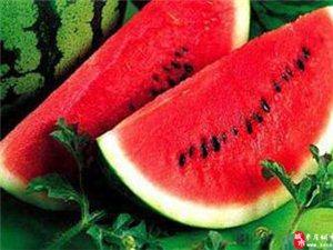 夏季养生记得吃这5种水果