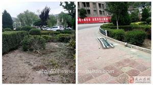 武山县严厉打击破坏市政公用设施的行为