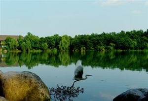 从浣花溪到锦城湖,下一个成都生态居住板块在哪?