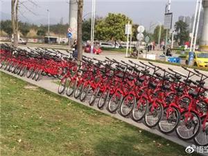 【关注】首家共享单车倒闭!创始人:90%的车已找不到