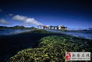 探秘中国(蓝天豚)硅藻泥博物馆,开启全新硅藻生态世界