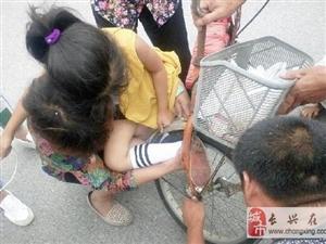 夹浦一女孩脚卷入车轮,好心大叔相救