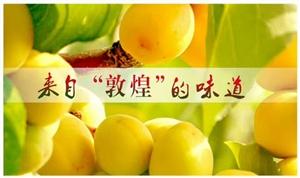 首届敦煌李广杏民俗文化节