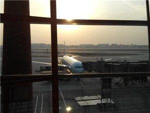 外国人来中国旅游,这个老外的评论和看法不同寻常