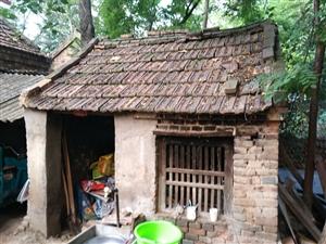 【求转发】通许县竖岗镇王营村委楚营村的一户贫困家庭