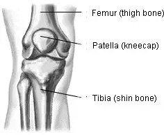 史上最全的膝盖劳损恢复方法(内附完整拉伸示意图)