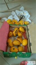 大热天的确不适合买芒果