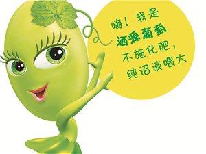 """唱响江西绿色农业""""最强音""""— 澳门太阳城平台县欣悦农场"""