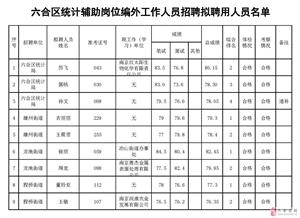 六合区统计辅助岗位编外工作人员招聘拟聘用人员名单公示