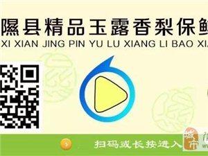 隰县玉露香梨精品版开通上线