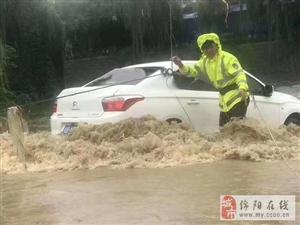 洪水漫上路面;过夜小车险被冲河里